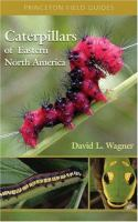 Caterpillars of Eastern North America : a guide to identification and natural history