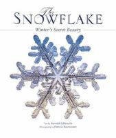 The Snowflake
