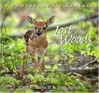 Lost in the Woods catalog link