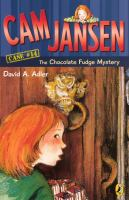The Chocolate Fudge Mystery