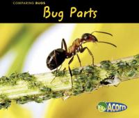 Bug Parts