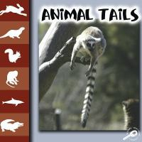 Animal Tails
