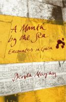 A month by the sea :encounters in Gaza /Dervla Murphy.