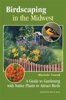 Birdscaping in the Midwest