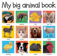 My Big Animal Book
