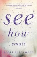 Cover of the book See how small : a novel