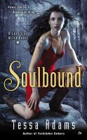Soulbound : a Lone Star witch novel