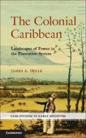 The colonial Caribbean [electronic resource] : landscapes of power in plantation system