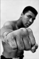 Ali : a life
