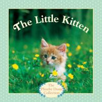 The little kitten