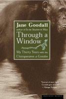 Through A Window