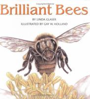 brilliant bees