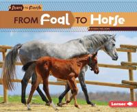 From Foal to Horse