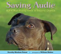 Saving Audie : a pit bull puppy gets a second chance