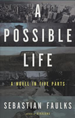 Cover art for A Possible Life