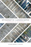 Epigenetic landscapes : drawings as metaphor /