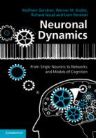 Neuronal dynamics [electronic resource] : from single neurons to networks and models of cognition