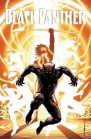 Black Panther: A Nation Under Our Feet. Book Two