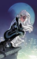 Title: Black Cat. 3, All dressed up Author:MacKay, Jed