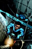 Nightwing : the great leap