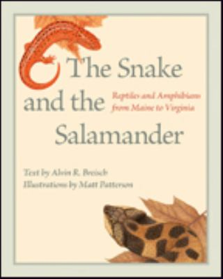 reptiles and amphibians from Maine to Virginia