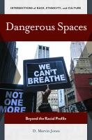 Dangerous spaces : beyond the racial profile /