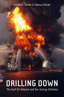 Drilling Down: The Gulf Oil Debacle and Our Energy Dilemma