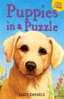 Puppies in A Puzzle