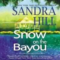 Snow on the bayou : a Tante Lulu adventure
