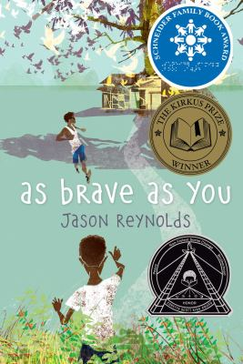 As Brave As You book jacket