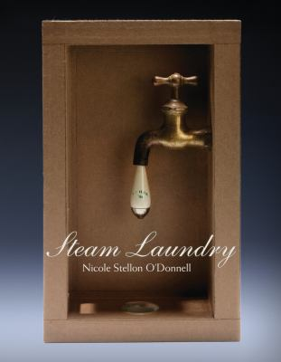 Cover art for Steam Laundry: Poems