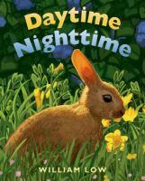Daytime Nighttime