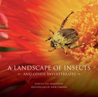 A landscape of insects and other invertebrates