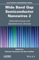 Wide band gap semiconductor nanowires 2 [electronic resource] : heterostructures and optoelectronic devices