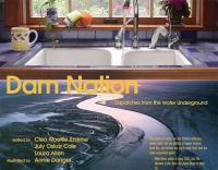 Dam Nation