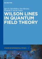 Wilson lines in quantum field theory [electronic resource]