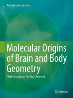 Molecular Origins of Brain and Body Geometry [electronic resource] : Plato's Concept of Reality is Reversed