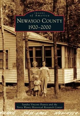 Newago County by Sandra Peavey