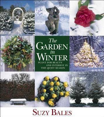 The Garden in Winter