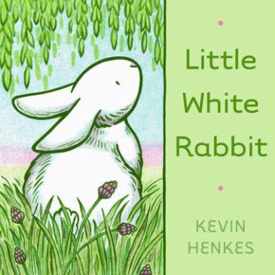 Cover image for Little white rabbit