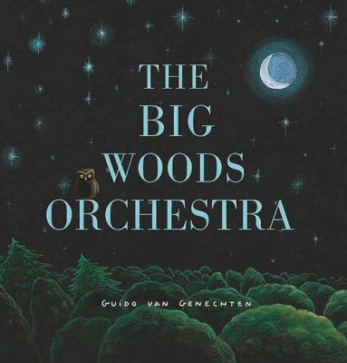 Cover image for The Big Woods Orchestra