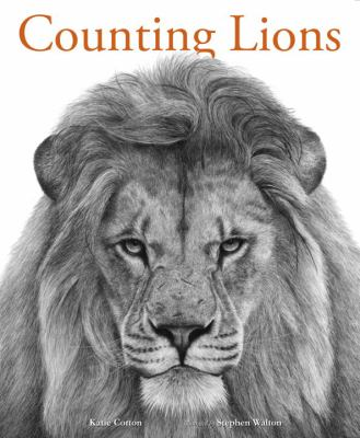 counting lions
