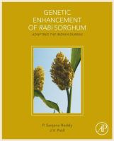 Genetic enhancement of rabi sorghum : adapting the Indian Durras için kapak resmi