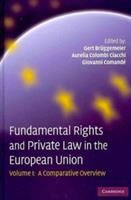 Fundamental rights and private law in the European Union : II Comparative analyses of selected case patterns için kapak resmi