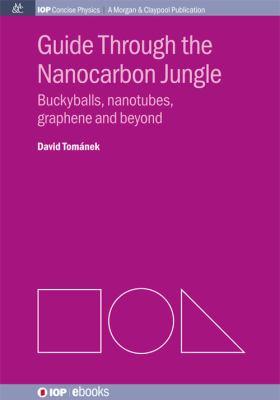 Guide through the nanocarbon jungle : buckyballs, nanotubes, graphene, and beyond için kapak resmi