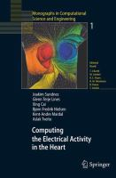 Computing the Electrical Activity in the Heart için kapak resmi