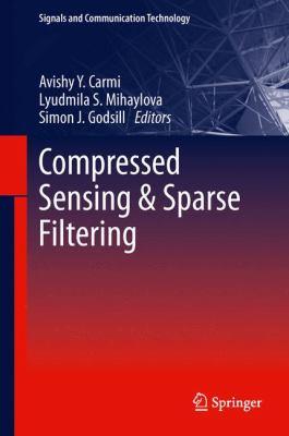 Compressed Sensing & Sparse Filtering için kapak resmi