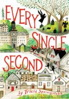 Cover image for Every single second / Tricia Springstubb ; illustrations by Diana Sudyka.