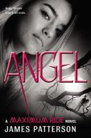 Cover image for Angel / James Patterson.