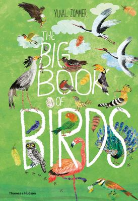 Cover image for The big book of birds / words and pictures by Yuval Zommer ; bird expert, Barbara Taylor.
